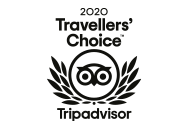 Traveler's Choice Award 2020